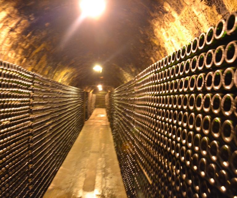 Galerie: Weinregion Penedés